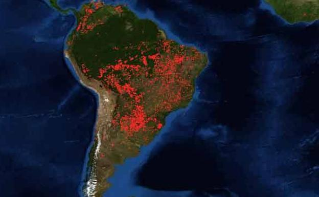 Resultado de imagen para incendios en la amazonia