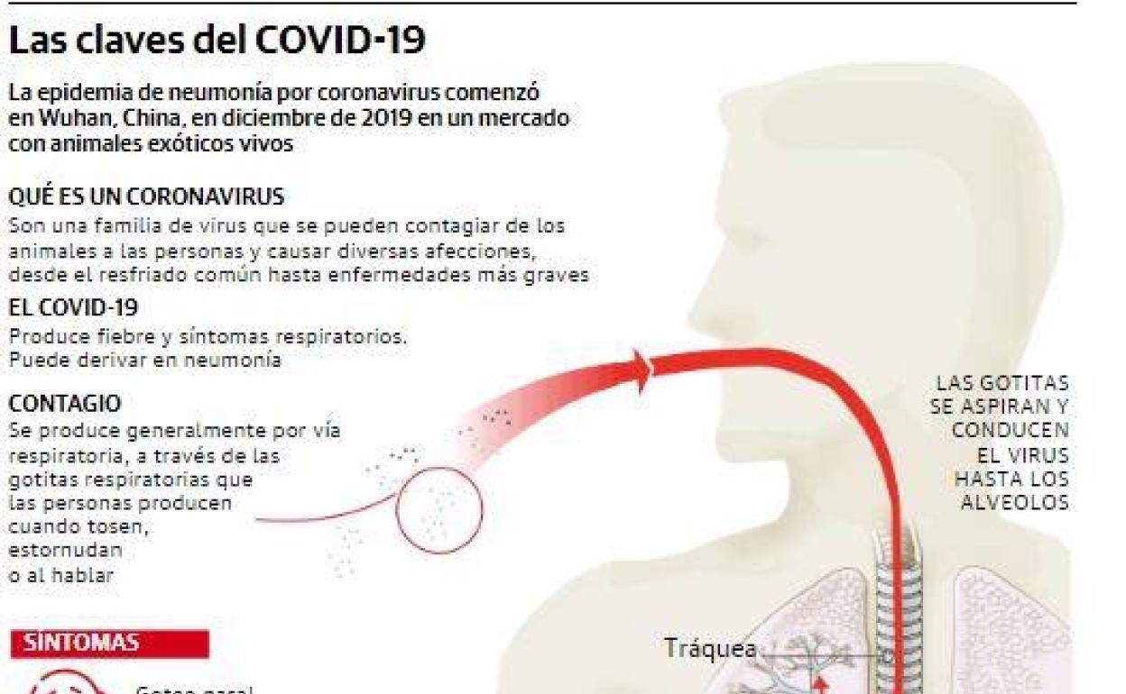 coronavirus el comercio
